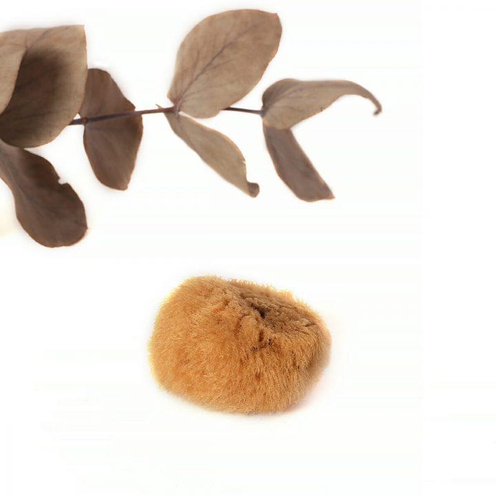 hubka na odličovanie prírodná morská jednotlivo 1