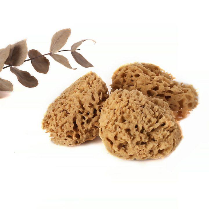 prírodná morská huba do vane honeycomb