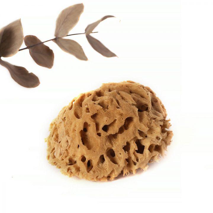 prírodná morská huba do vane honeycomb jednotlivo 1
